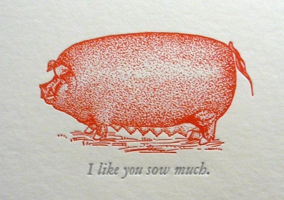 I like you sow much.