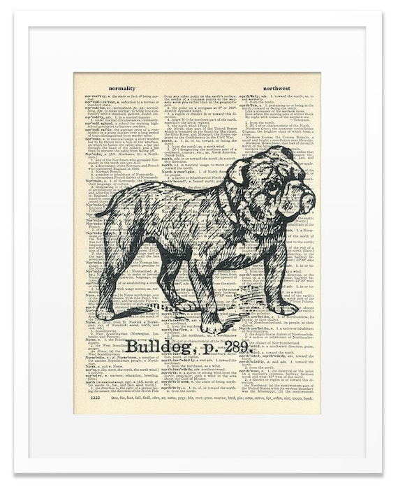 Bulldog - Vintage DICTIONARY Art Print - 8x10