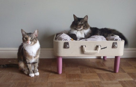 Lovable Luggage Pet Bed - Upcycled Suitcase - White and Pink - 2 dollars goes to carescatshelter