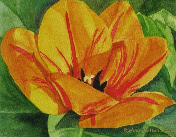 Yellow Tulip Flower Art: Stretched Canvas Giclee 20x30