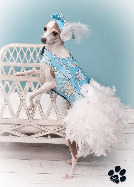 Baby Blue перо Harness собак платье - Limited Edition