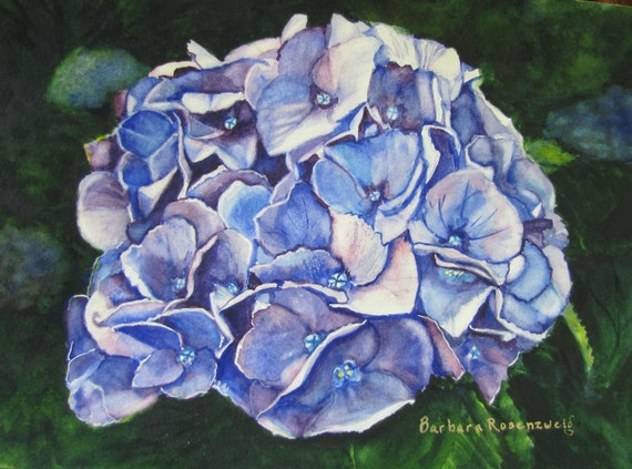 Blue Hydrangea Flower Art: Limited Ed Watercolor Print 11x14