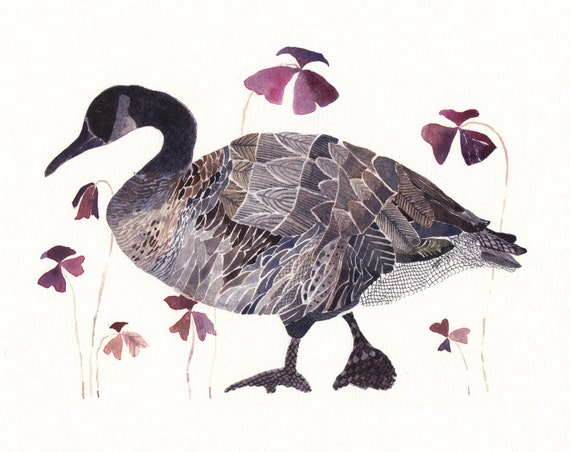 Goose with Oxalis - Limited Edition Print