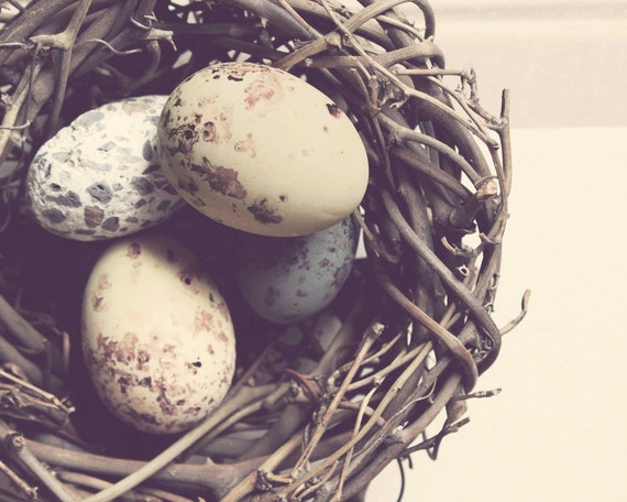 Feather Your Nest - Pastel Rustic Nest Photography Print (10x8) - Shabby Chic Brown Blue Cream Bird Nest Photo