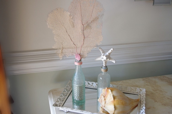 Vintage Aqua Soda Bottle with Atlantic Sea Fan