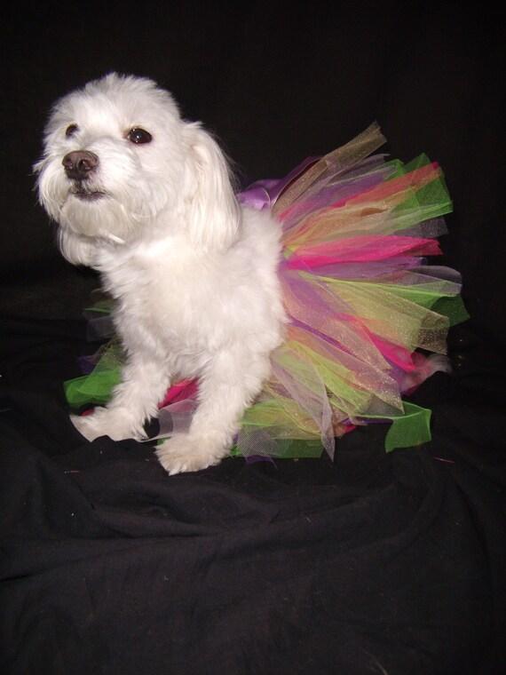 Candyland Princess Tutu... Medium (15-17  inches around)...
