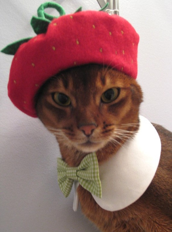 strawberry beret