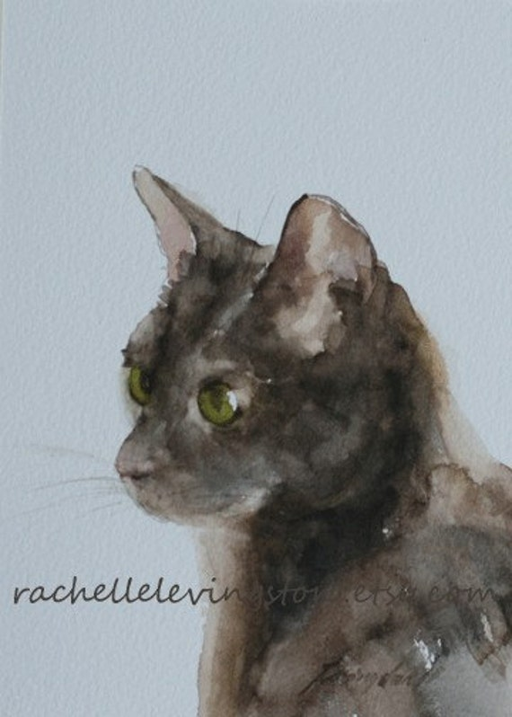 black and white cats with green eyes. Cat with green eyes 5x7
