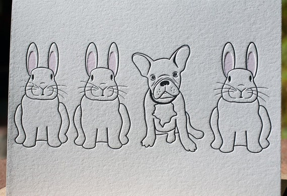 French Bulldog and Bunnies