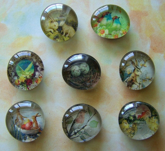Set of 8 Assorted Upcycled  Fauna Glass Marble Magnets