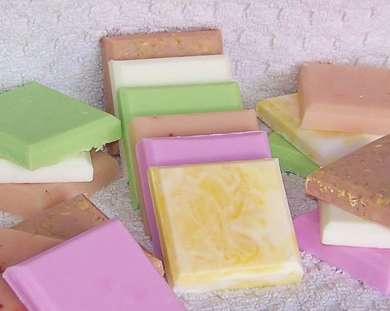 Natural Soap Sampler Pack- (6) 2 oz soaps great for travel, guests or trial