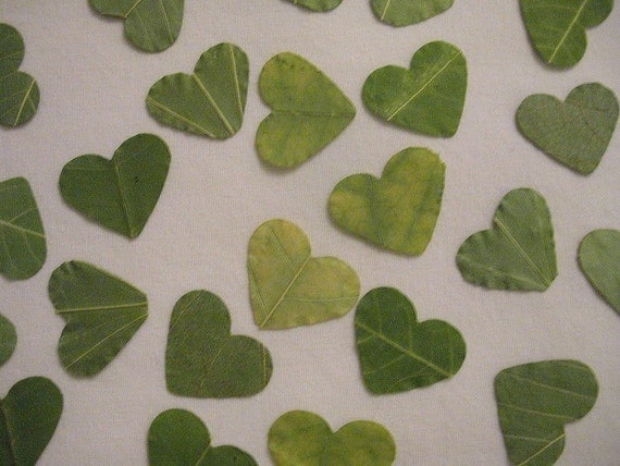 REAL LEAVES Heart Confetti