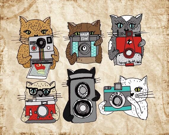 Cats Love Cameras  8x10 Print