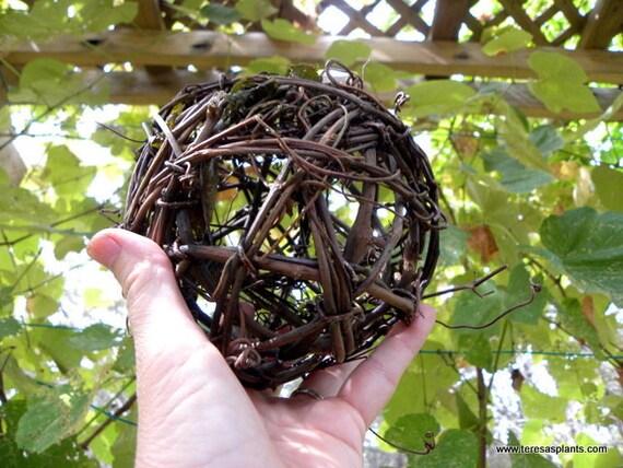 how to make grapevine balls