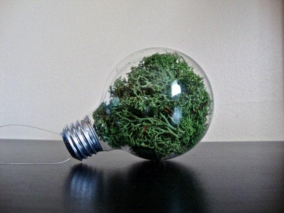 recycled lightbulb vase