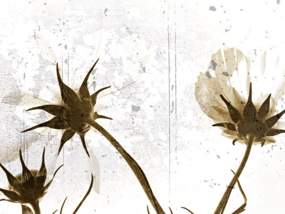 Sepia Fine Art Photograph Beckoning Flowers by Catherine Jeltes as galleryzooart on Etsy from etsy.com