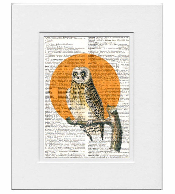 Halloween OWL Portrait1- ORIGINAL ARTWORK  print over an Upcycled Vintage Dictionary page Book art - Free Domestic Shipping