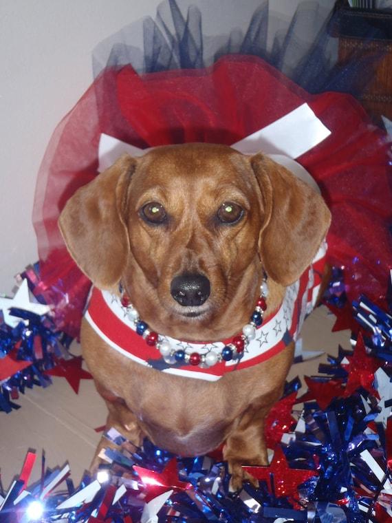 Статуя Свободы Туту платье собак Harness