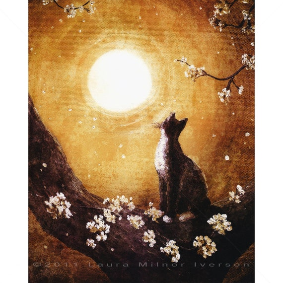 Tuxedo Cat Cherry Blossoms Grunge Golden Dark Art Print