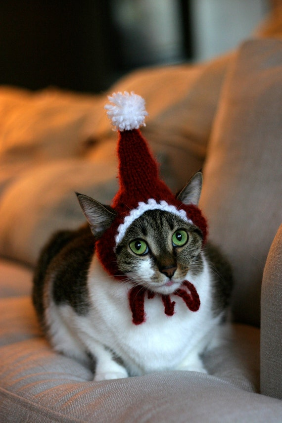 knit santa cat for cats - christmas cat costume
