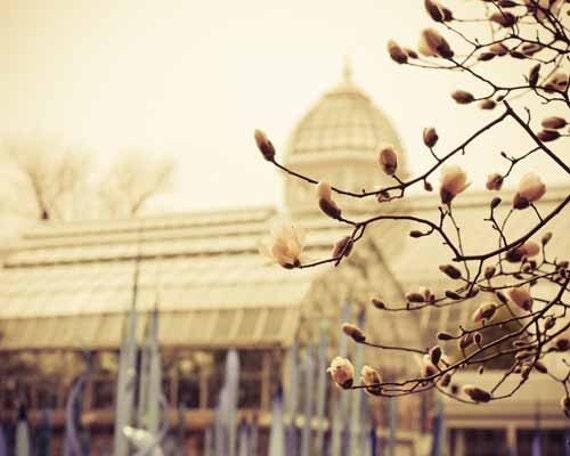 Мечтая о Весна в Париже Женский девчушки розовыми цветами старинных парниковых - романтический мечтательный - подарок - 8x10 Fine Print художественной фотографии