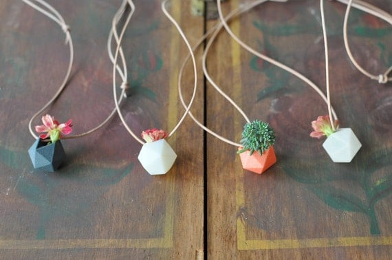 Miniature Wearable Planter Gift Set: Icosahedrons