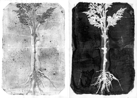 ooak Monotypes: pair of Botanical Silhouettes on Vintage Dictionary Sheets and Rice paper