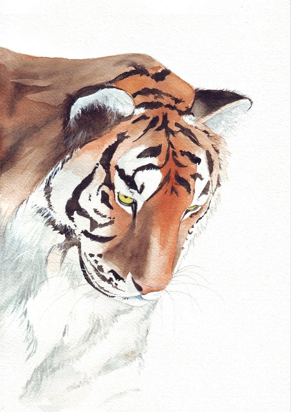 Tiger Painting- animal print of watercolor painting - 5 by 7