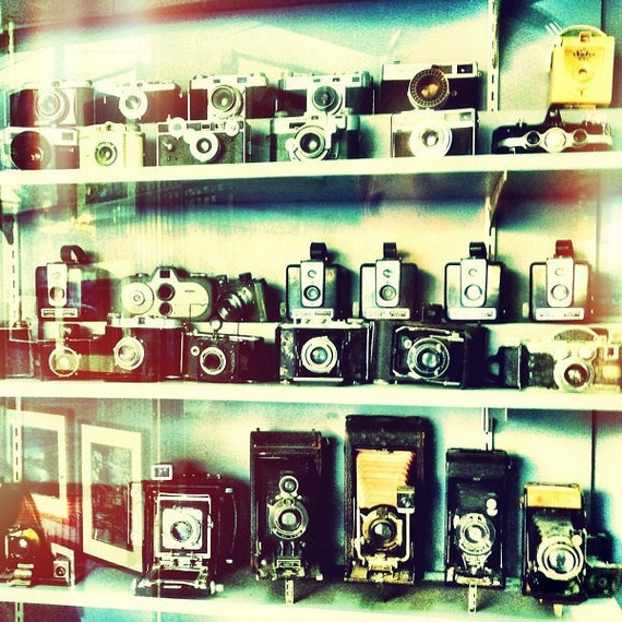 Vintage Cameras in Shop Window, home decor, wall art, 5x5 fine art photo