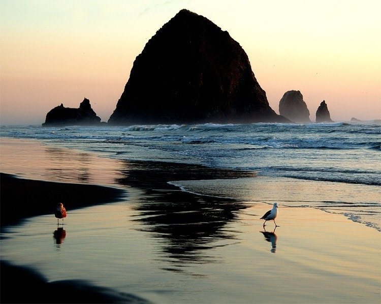 A pair of seagulls enjoy a beautiful sundown near Haystack Rock at Cannon Beach, Oregon.