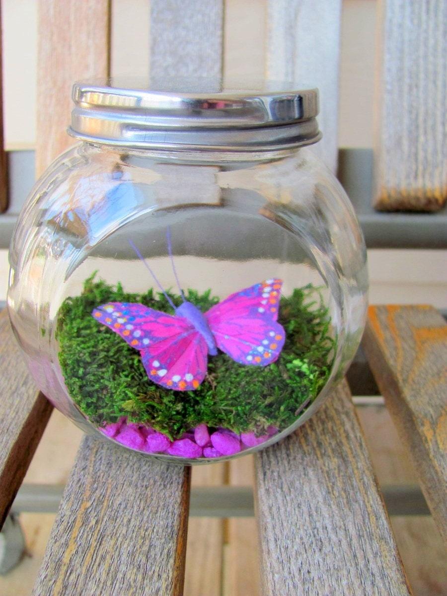 SALE Purple Butterfly Terrarium