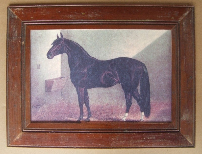Farm Animal Pictures To Print. Farm Animal Horse Print Reclaimed Print Wood Frame HS3 The frame is made from Authentic house materials, salvaged from an early house in Upstate NY.