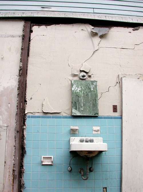 Everything but the Outdoor Abandoned Bathroom Sink - 8x10 High Quality Photo Print