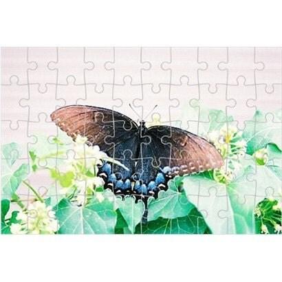 http://ny-image3.etsy.com/il_fullxfull.149276535.jpg