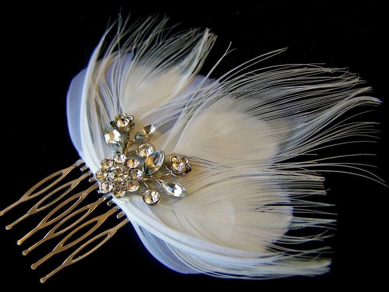 White peacock feather
