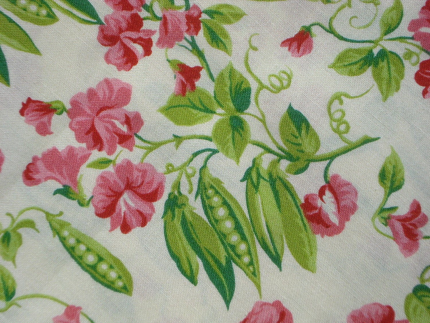 fq sweet peas on cream peas and carrots american jane fabric  from claydeal