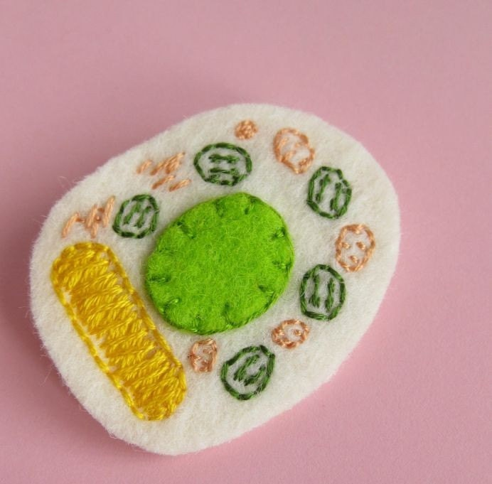 plant cell cross section brooch yourorgangrinder