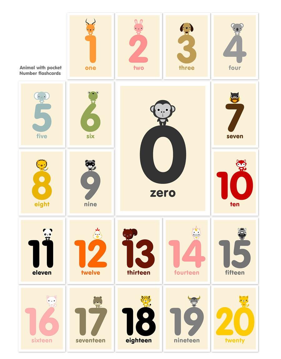 Animal Number Flashcards 1-20 | FotoFuze