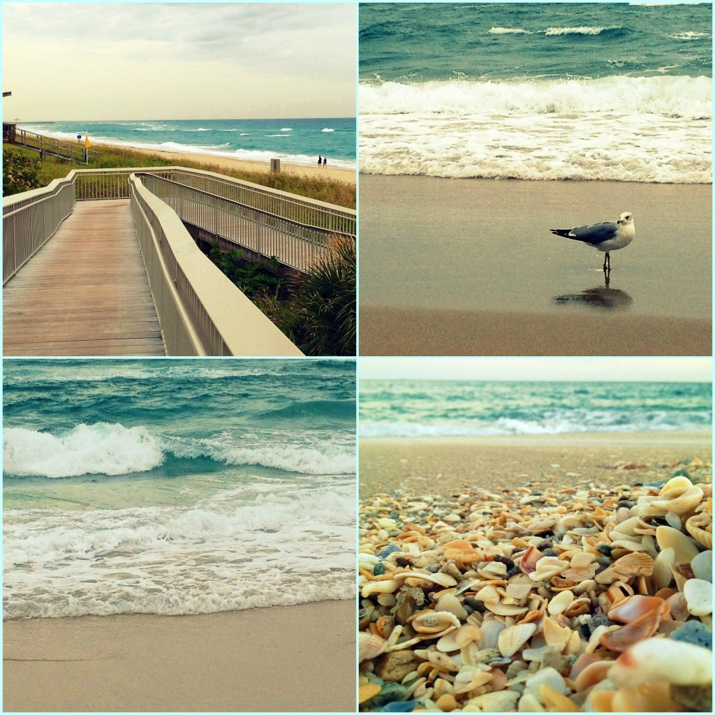 Beach Photography, Photo Set, Turquoise Beach, Ocean Waves, Seashells, Seagull, Beach Bum Chix