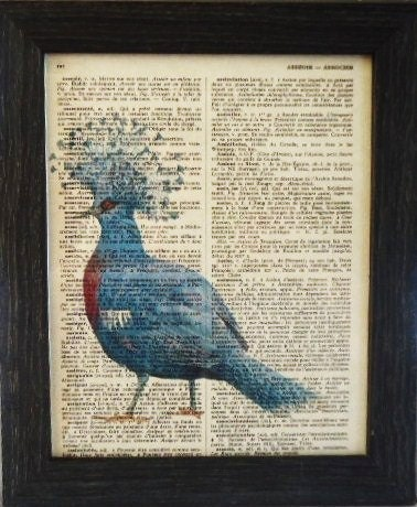 an old French dictionary page with an image of a blue pigeon on top of it