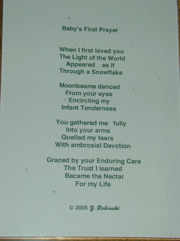 spider descripton poem