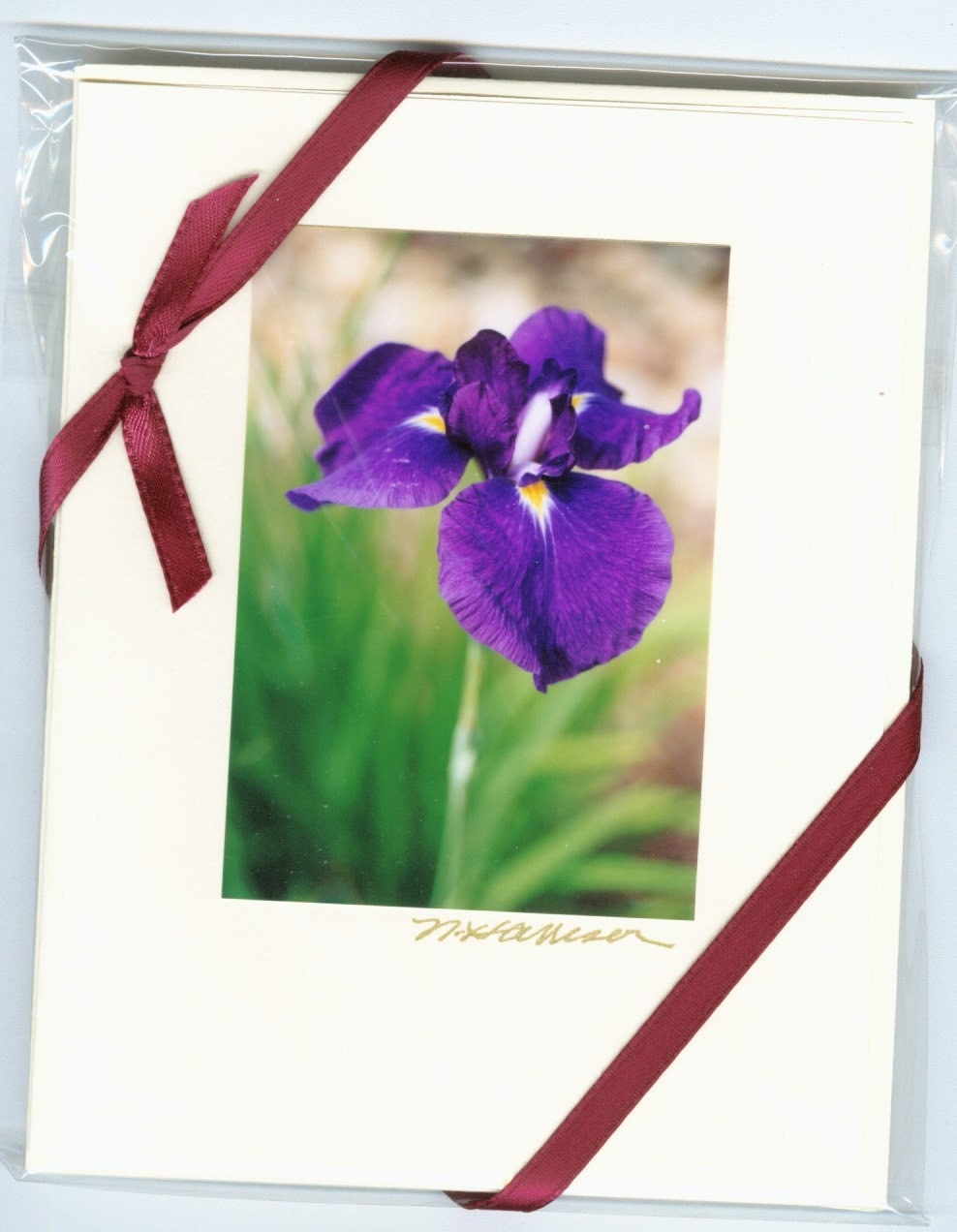 MOTHER'S DAY GREAT GIFT 5 Blue Iris Notecards