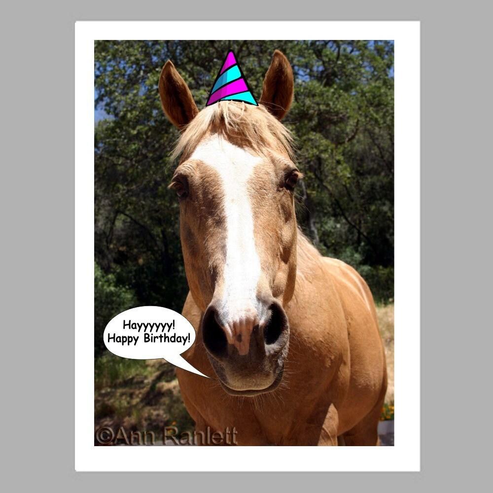 Поздравления с днем рождения картинки с лошадью 48