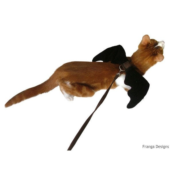 Vampire Bat Wings Harness and Leash for Cats and Dogs - Pet Halloween