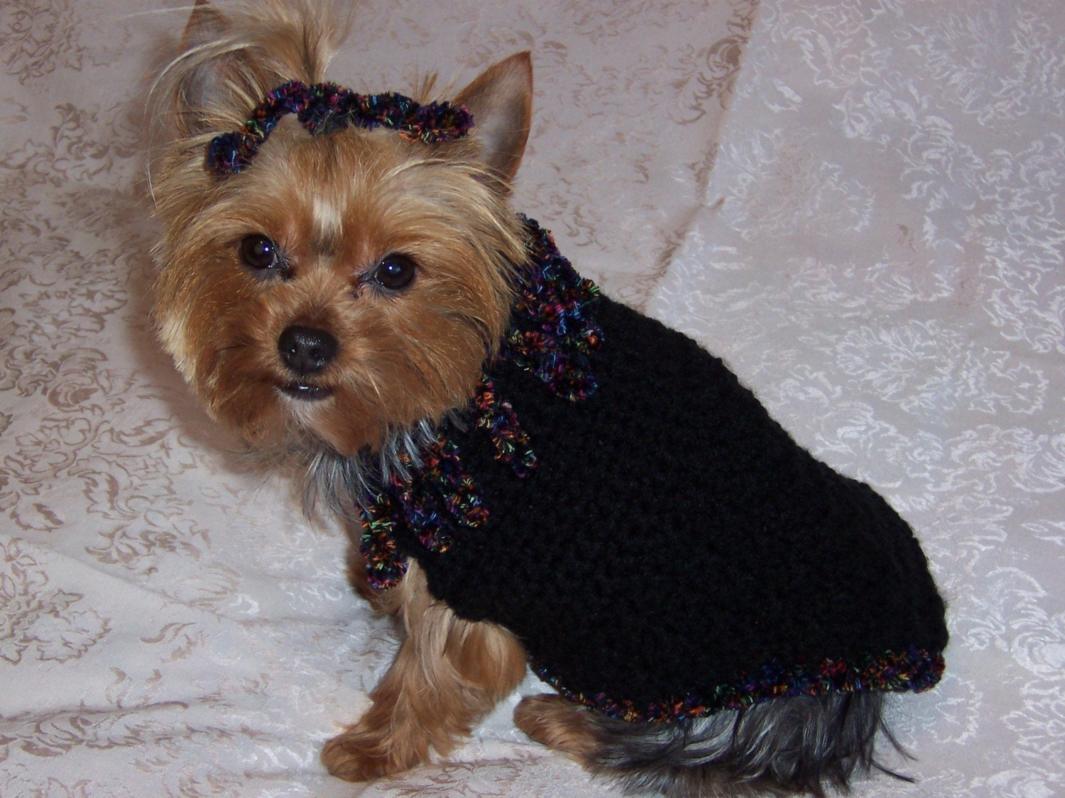 Free Yorkie Crochet Dog Sweater Pattern Dog Breeds Picture
