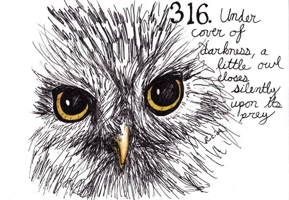Cool owl drawings - photo#26