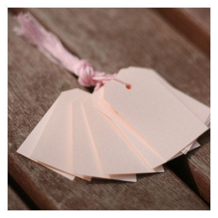 Gift Tag 12 sheet and String (5 different colors)