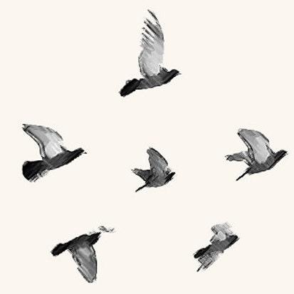 Whirlybird Designs