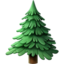 evergreen_tree