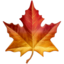 maple_leaf